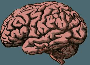 Alzheimer Symptome