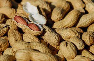 Lebensmittelallergien erkennen