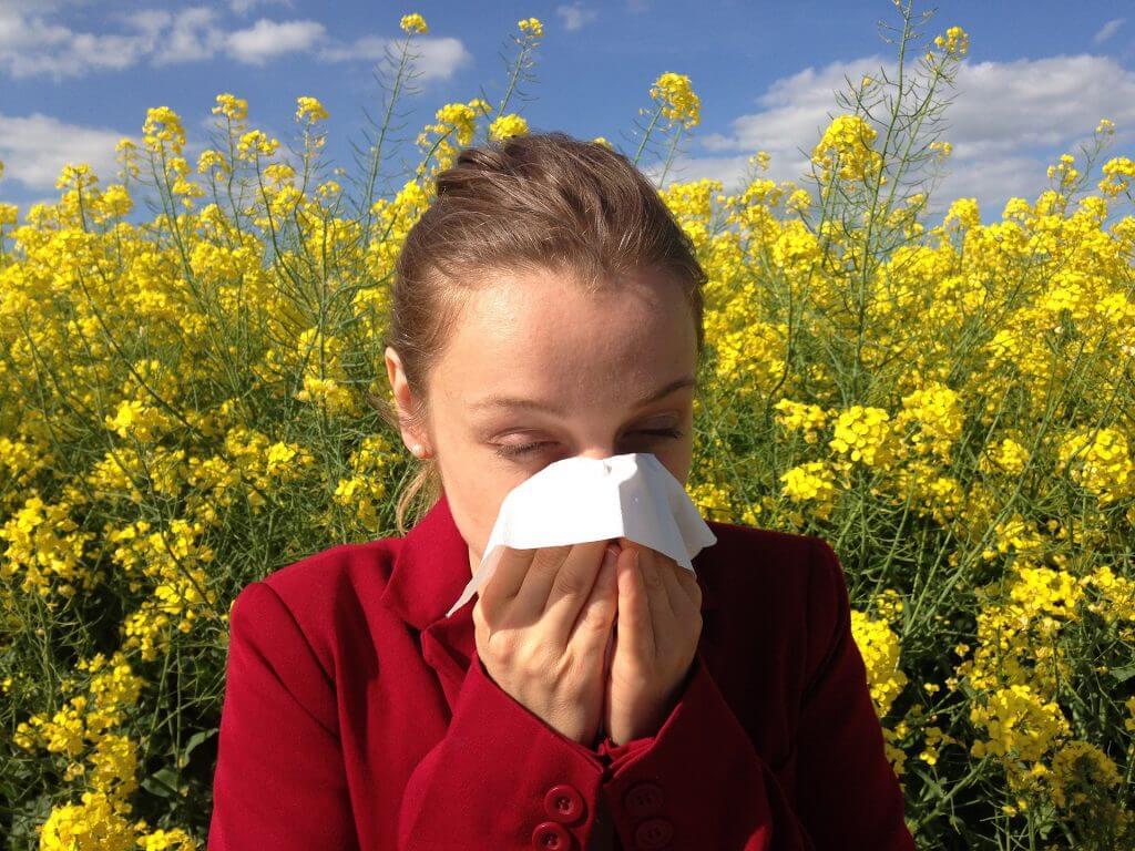 Allergie behandeln mit Nahrungsergänzungen