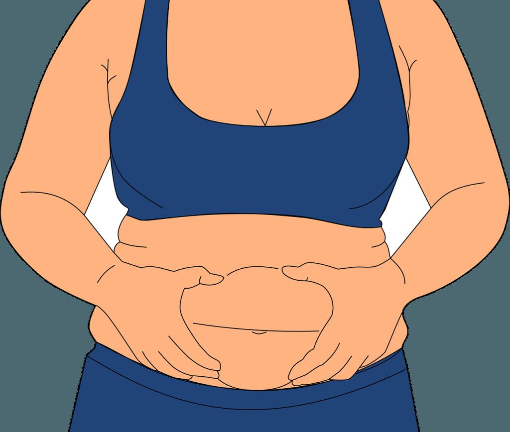 Schnelle Diäten, um Gewicht zu verlieren, ohne zu verhungern