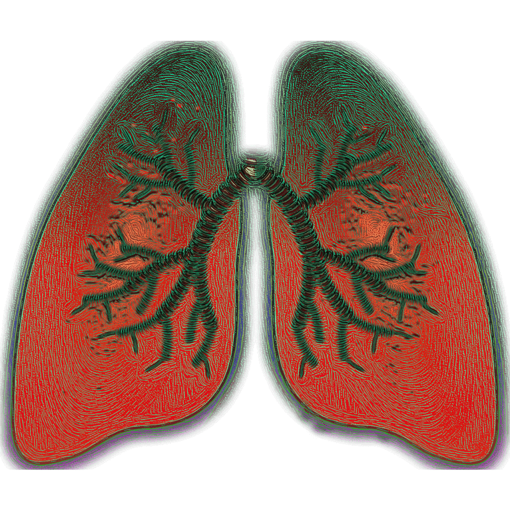 Wie sind die Symptome bei Asthma?